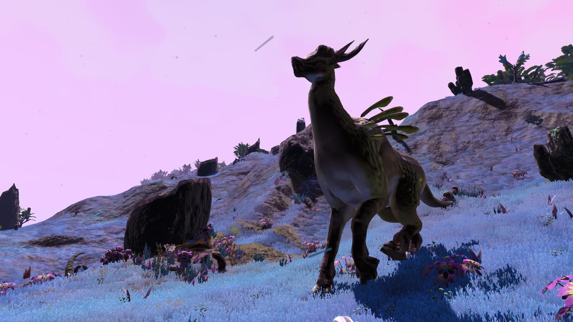 Bigger Creatures