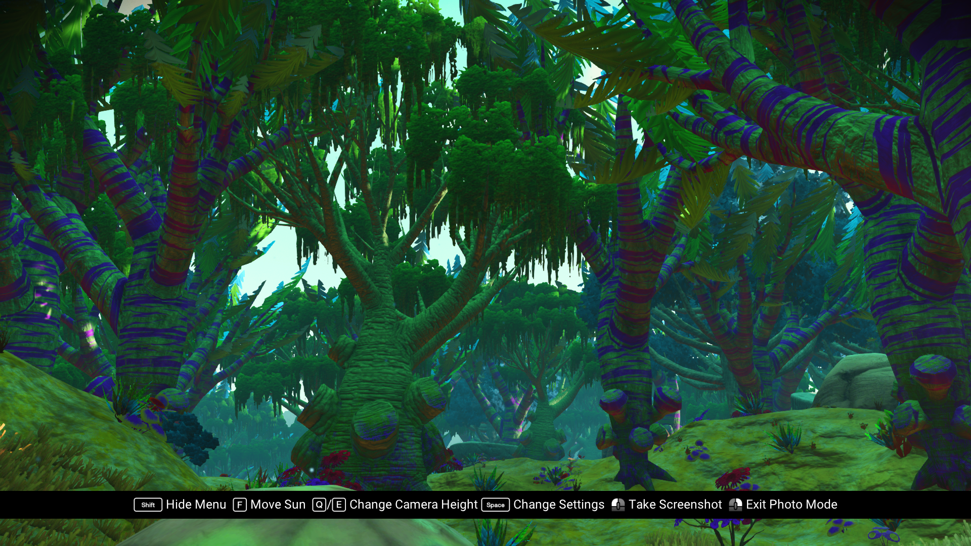 Realistic Plant and Tree Sizes