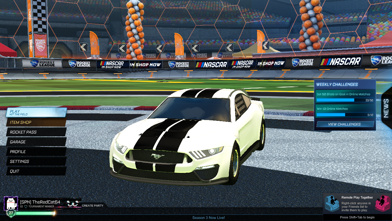 Mustang Stripe Bundle